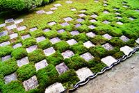 方丈北庭(東福寺)
