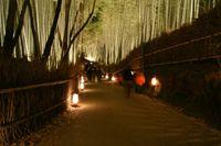 竹林ライトアップ(嵐山花灯路)