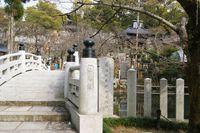 極楽橋 蓮池(金戒光明寺)