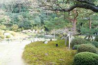 洗心滝(青蓮院門跡)