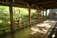 廊下(永観堂禅林寺)