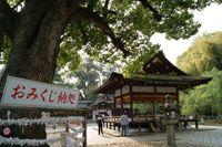 拝殿(平野神社)
