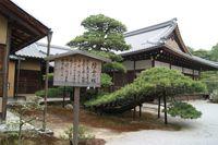 陸舟の松(金閣寺)