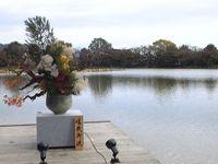 大沢の池(大覚寺)
